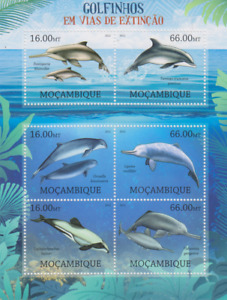 Endangered Wildlife Rare Dolphins Mozambique Mint 3493