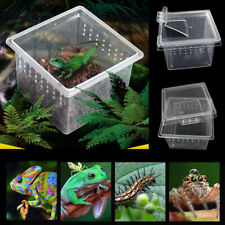 New listing Pet Reptile Insect Breeding Box Lizards Spider Feeding Case Container Reusable