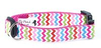 Rainbow ZigZag Summer Dog Collar OR Lead - Size Small - Large
