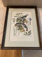 Vintage Arthur Singer Framed Print  #4 Mockingbirds & Botanical