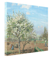Camille Pissarro Orchard in Bloom Painting Print on Canvas Gallery Wrap Decor
