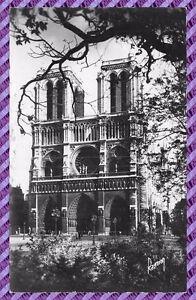 Paris - Notre Dame And Its Gardens
