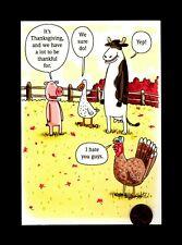 Thanksgiving Turkey Pig Duck Cow Joking - Humorous Greeting Card New W/ Tracking