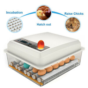 Large Capacity ABS Eggs Incubator For Hatching Automatic Turning Goose Quail