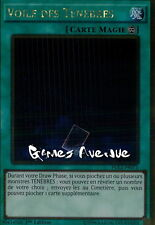 Yu-Gi-Oh ! Voile des Ténèbres (Veil of Darkness) PGL2-FR071 (PGL2-EN071) VF/Gold