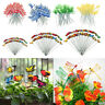 50x Garden Yard Planter Colorful Whimsical Butterfly Stakes Dragonfly Stake
