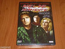 PIEL DE SERPIENTE - Sidney Lumet / Marlon Brando - Tennessee Williams -Precintat