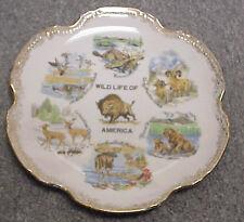 Wild Life of America Souvenier Vintage Collector Plate A-...   Z-452