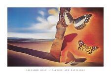 Paysage aux Papillions Poster! Salvador Dali Beauty Butterflies Desert Scenery!