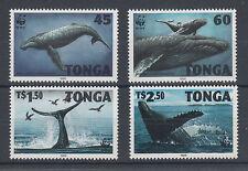 Tonga Sc 915-918 MNH. 1996 WWF Endangered Whales, cplt set of 4, VF