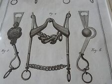 HORSE EQUESTRIAN BITS BRIDLE   amazing mounted 1700s engravings GIFT POTENTIAL a