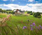 3 Tage Erzgebirge Urlaub 4* Berg Hotel Seiffen 2 Pers. Kurzreise Gutschein Sauna