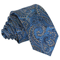 Blue & Silver Mens Slim Tie Woven Floral Royal Paisley Wedding Necktie by DQT
