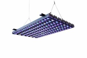 Brand New Orphek OR3 Reef Day Plus LED Bar 60/90/120/150 Marine Coral Fish