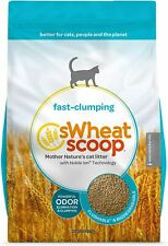 New listing sWheat Scoop Natural Fast-Clumping Wheat Cat Litter 36 lb