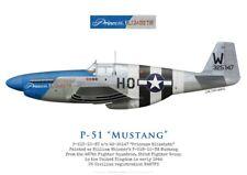 """Print warbird P-51C Mustang """"Princess Elizabeth"""", N487FS (by G. Marie)"""