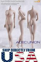 PHICEN S07C 1/6 Super Flexible Seamless Female Figure Body L Bust PALE U.S.A.