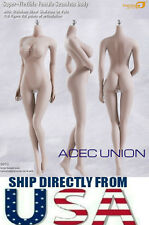 PHICEN S07C 1/6 Super Flexible Seamless Female Figure Body L Bust PALE U.S.A.