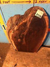 """#9773 1 7/8"""" Thick black walnut Live Edge Slab lumber Kiln Dried"""