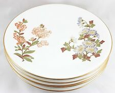 SET 7 LUNCHEON PLATES ANTIQUE HAND PAINTED FLORAL ROYAL WORCESTER CHINA W1701
