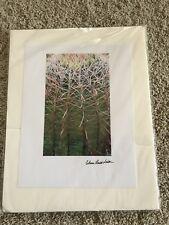 "ADAM LEWIS SMITH Vintage Signed Color Nature Color Photo Barrel Cactus 11 x 8.5"""