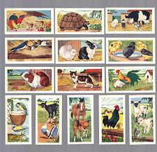 CIGARETTE/TRADE/CARDS. Ewbanks. ANIMALS OF THE FARMYARD.(1960).(Full Set of 25).