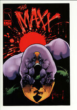 Maxx 1 - 1st Appearance - 2 Copies - High Grade 9.4 NM