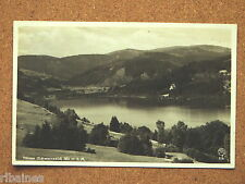 R&L Postcard: Germany/Black Forest, Titisee Lake Real Photo