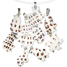 D5188CL Charm Pendant  Mix Shell Cowrie Natural Grilled White Ivory Bail 10 Qty