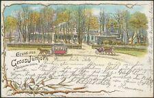 Postkarte Gruss aus Gross-Jüthorn im Wandsbecker Gehölz -Pferdebahn, litho