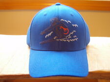 Patagonia Surfer Roger That Hat