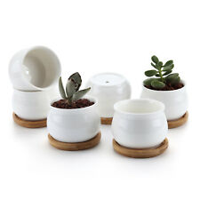 """6 pcs 2.75"""" Ceramic White Jar Shape Succulent Cactus Plant Flower Pot with Tray"""