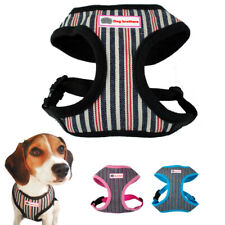 Soft Nylon Dog Harness and Leash set Small Medium Dog Cat Walking Vest Chihuahua