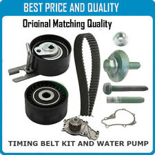 High Quality Timing Belt Water Pump For Citroen Fiat Ford Mini Peugeot Volvo