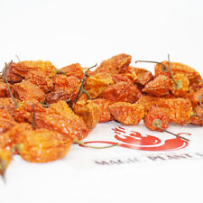 Whole Ghost Chili Pepper  - Dried Bhut Jolokia Dry Whole (1kg=2.2lb)