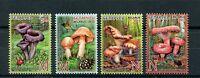 Belarus 2013 MNH Edible Mushrooms 4v Set Nature Flora Insects Ladybirds Stamps