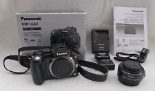 Panasonic DMC-G5X with 14-42mm F3.5-5.6 ASPH Power Zoom Lens