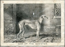 "GREYHOUND ANTIQUE Waterloo Coursing Dog Art Engraving Print ""Bab at the Bowster"""