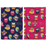 2020 Diary Owl A5 One Day to Page  PU Organiser, Monthly Index , Owls with magne