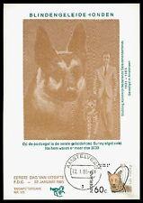 NIEDERLANDE MK 1984 HUNDE BLINDENHUND GUIDE DOG CARTE MAXIMUM CARD MC CM bv78