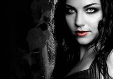 Evanescence Promo Poster M154