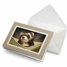 Greetings Card (Biege) - Ferret Hammock Pet Rodent Animal #16329