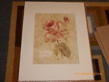 Cheri Blum Matted Print Rose 11x14
