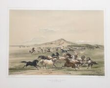 Wild Horses. At Play, By George Catlin,Original Lithograph,Limited Edition 1970