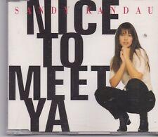 Sandy Kandau-Nice To Meet Ya cd maxi single