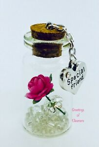 Special Friend Miniature Gift Keepsake Friend Gift Present For Any Occasion