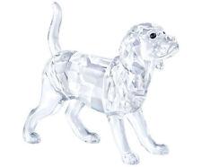 SWAROVSKI BEAGLE DOG BRAND NEW IN BOX #5135917 CRYSTAL CLEAR CUTE SAVE$$ F/SH