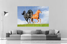 CHEVAUX HORSES Wall Art Poster Grand format A0 Large Print
