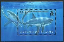 Ascension Poissons Requins Renard Thresher Sharks Fishes Haie Fische **2008 Bloc