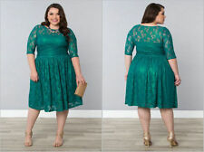 Unbranded Lace Plus Size Round Neck Dresses for Women